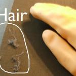 Animal Hair